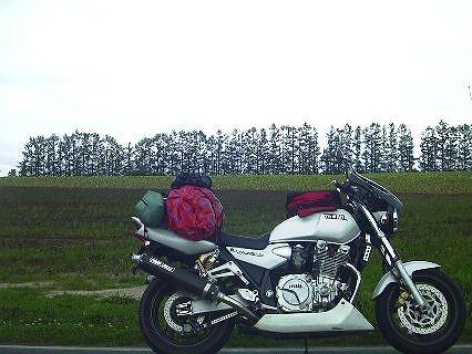 2005_14.jpg