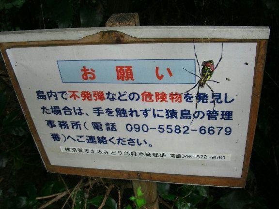 20081005L_22.JPG