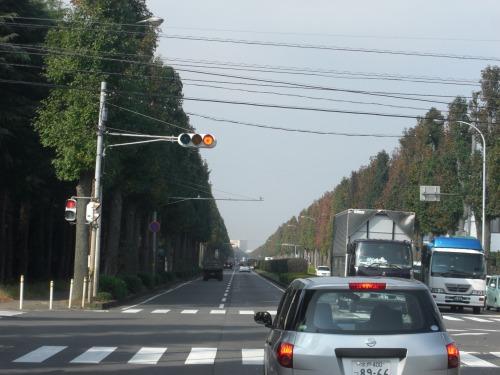 20091107_02.jpg